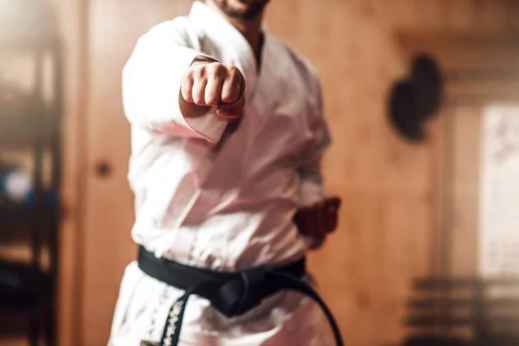 anekdoto o totos kai o mavrozonas protathlitis tou karate poly gelio