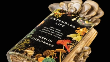 Απίστευτο ΒΙΝΤΕΟ: Μανιτάρια πλευρώτους ΚΑΤΑΣΠΑΡΑΞΑΝ βιβλίο! Ποια η εκδίκηση του συγγραφέα