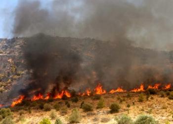 Βάρη: Μεγάλη πυρκαγιά απειλεί τα παιδικά χωριά SOS-video