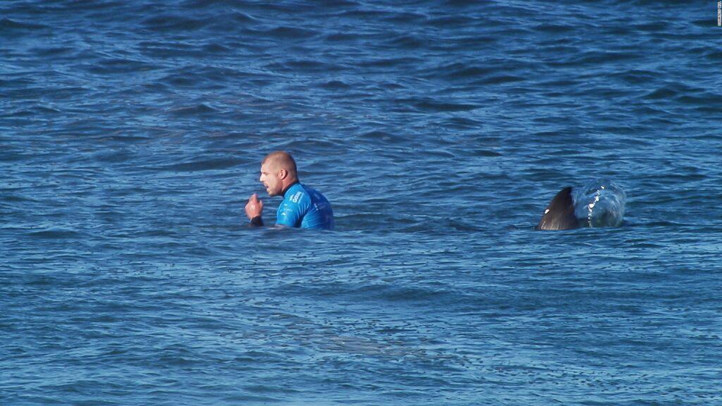 σερφερ δέχεται επίθεση απο καρχαρία