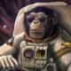 Ήταν ένας τύπος που από μικρός έπαιρνε τους χειρότερους βαθμούς στην τάξη του. Κάποια στιγμή όταν μεγάλωσε αποφάσισε να σπουδάσει αστροναύτης.