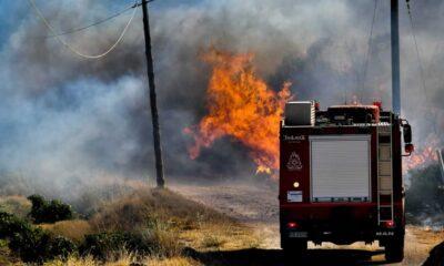 Νέος πύρινος εφιάλτης απειλεί την Αττική, αφού έχουμε φωτιά στην Κερατέα και μάλιστα σε δασική έκταση στην περιοχή Ρουμουντί.